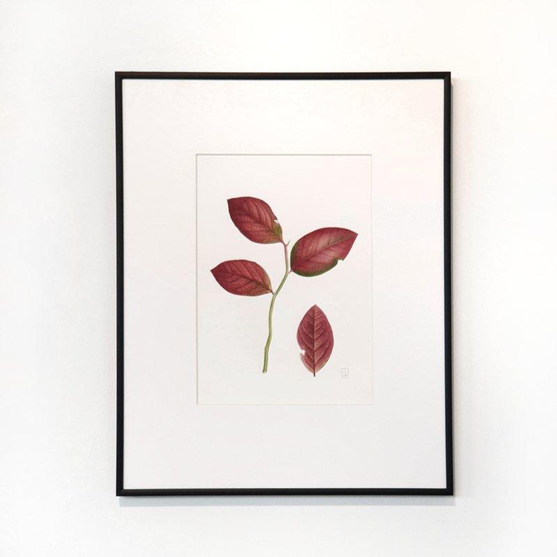 """08.10. """"Ziedu gleznošana ar J.Grīnbergu"""" PILNA DIENA"""