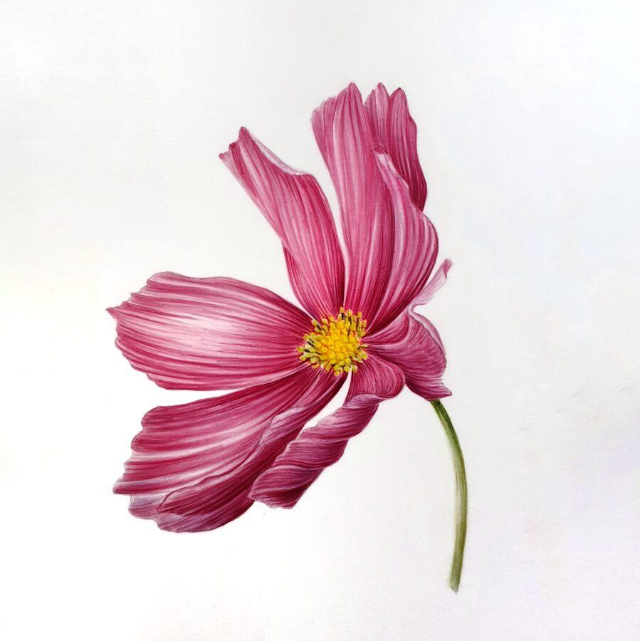 """26.09. Nodarbība """"Ziedu gleznošana"""" / akvarelis/ SESTDIEN 14:00-17:00"""