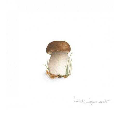 Atklātnīte ar aploksni CEPE DE BORDEAUX (15 x 15 cm)
