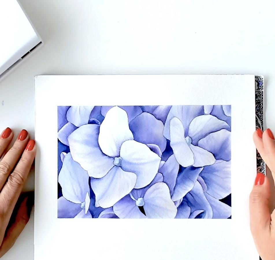 """Video-pamācība """"Kā gleznot hortenziju ar akvareļu krāsām"""""""