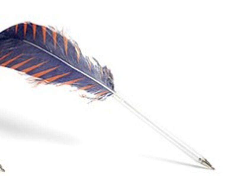 Pildspalva HAY Feather / orange - blue