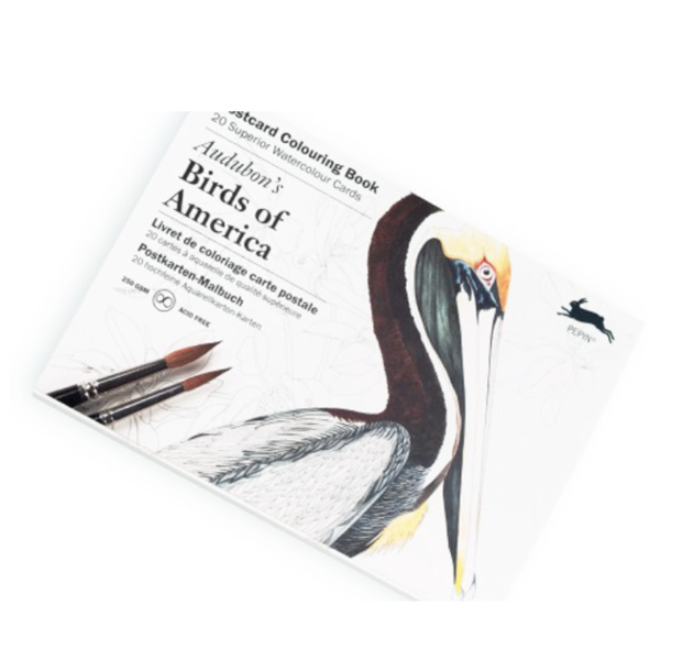 Putni krāsojamās kartiņas