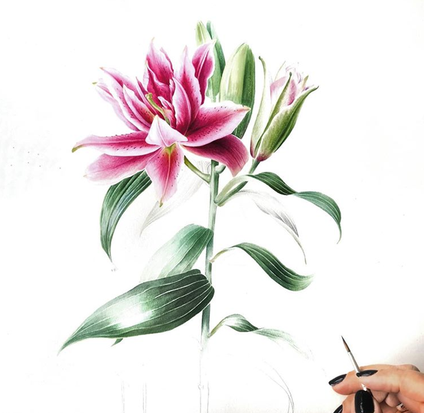 """17.07. """"Liliju vai īrisu gleznošana ar J.Grīnbergu"""" /akvarelis/ PILNA DIENA 10:00-16:00"""